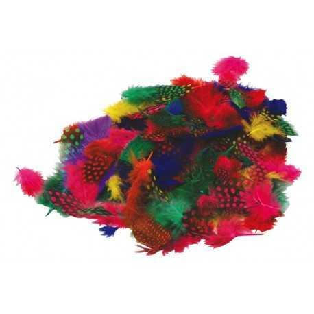 Sachet de plumes de Pintades, couleurs assortis