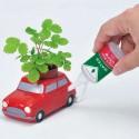 Graines de basilic, de menthe ou de fraise des bois à faire pousser dans la voiture