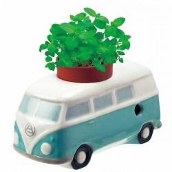 Graines de basilic, de menthe ou de fraise des bois à faire pousser dans le Combi VW