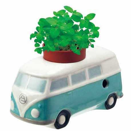 Plan de menthe à faire pousser dans le Combi VW