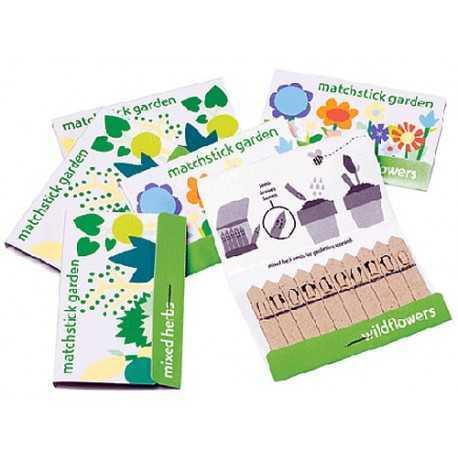 Faites sortir un jardin d'une pochette d'allumettes