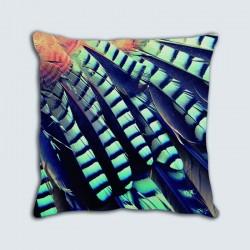 Coussins motif : Plumes rayées