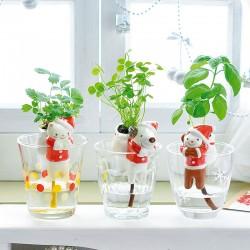 Les Kits d'horticulture de Noël fraise des bois ou basilic