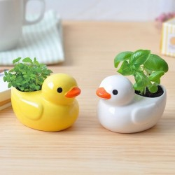 Ceramic duck with plant to grow
