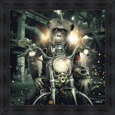 Tableau Gorille à Moto par Sylvain Binet